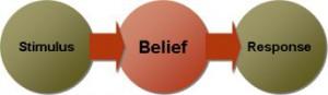 stimulus_belief_response
