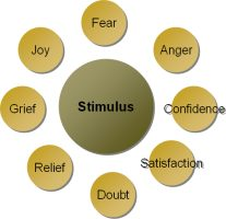 stimulus_response